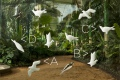 [3dwallpaper-birdsbig1000.jpeg]